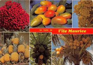 BG21241 mauritius ile maurice les fruits