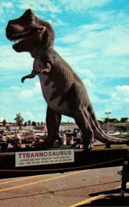 Texas Glen Rose Paluxy River Giant Dinosaur Tracks Tyrannosaurus Rex