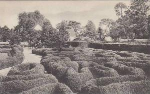 Virginia Mount Vernon Flower Garden Looking East Showing Boxwood Parterre Hom...