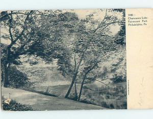 Pinhole Damage Pre-1907 LAKE IN FAIRMOUNT PARK Philadelphia PA hp9489