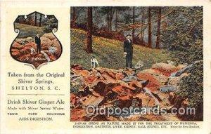 Drink Shivar Ginger Ale Shelton, SC, USA Unused