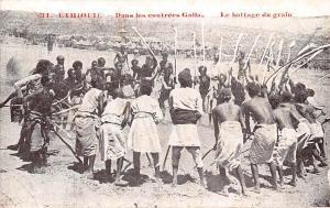 Ethiopia Dans les contrees Galla, Le battage du grain
