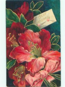 Divided-Back BEAUTIFUL FLOWERS SCENE Great Postcard AA4027