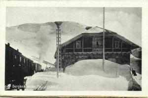 norway norge, HALLINGSKEID, Bergensbanen, Railway Station Train (1920s) Postcard