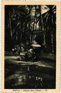 CPA AK Nefta- Chmin dans l'Oasis TUNISIE (1009384)