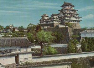 The White Heron Castle Vintage Postcard