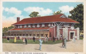 Animal House, Miller Park, Bloomington, Illinois, 10-20s