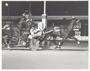 WINDSOR RACEWAY, Harness Horse Racing, KEN DEE COUNTESS wins