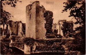 The Moat, Raglan Castle RAGLAN  Monmouthshire Wales UK vtg Postcard
