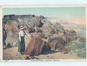 W-border PETRIFIED FOREST Adamana - Near Sun Valley & Holbrook Arizona AZ AD7050