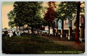 Zanesville Ohio~Moxahale Park~Penny Arcade Dragon Design~Moving Pictures~1913