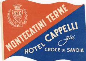 Italy Montecatini Terme Hotel Cappelli Vintage Luggage Label sk3377