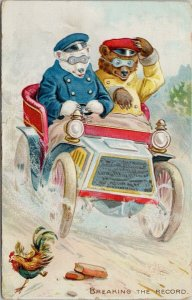 Little Bears Driving Car 'Breaking The Record' Racing Speed Tuck Postcard F62