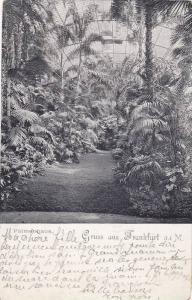Palmenhaus, Gruss aus Frankfurt a. Main, Hesse, Germany, PU-1899