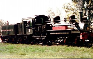 Trains West Side Lumber Shay Locomotive #9