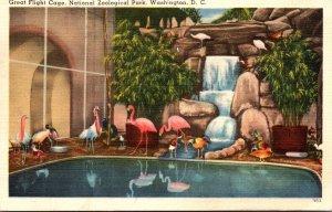 Washington D C National Zoological Park Great Flight Cage