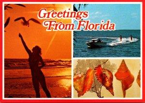 Florida Greetings With Girl Feeding Sea Gulls Water Skiers & Sea Shells