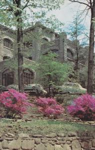 Spring Time, Assembly Inn, BLUE RIDGE, North Carolina, 40-60'