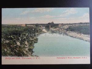 South Africa HARRISMITH O.R.C. BRIDGE & RIVER c1909 old Postcard by F. Wilson