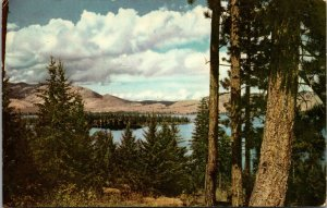 FLATHEAD LAKE MONTANA color 1940 union oil scenes from the west POSTCARD