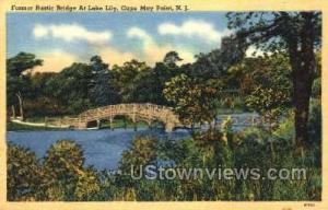 Former Bridge At Lake Lily  Cape May NJ 1955