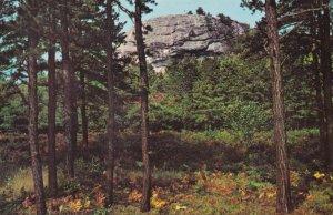 Jockey Cap Mountain Fryeburg Maine USA Postcard