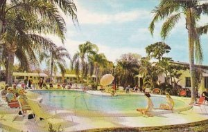 Florida Saint Petersburg Our Beautiful Private Pool At Cocoanut Grove Motel