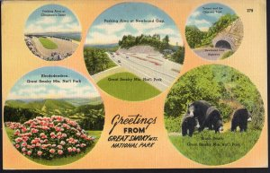 Tennessee Great Smoky Mountains National Park MultiView Greetings From - LINEN