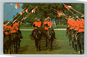 Officers Of Royal Canadian Musical Ride, Chrome Postcard