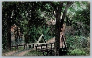 Nora Iowa~Elm Hollow Wagon Bridge~A Frame Rails~Dirt Road~c1908 Postcard