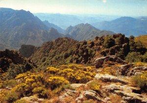 France Parc National du Caroux Landscape Postcard
