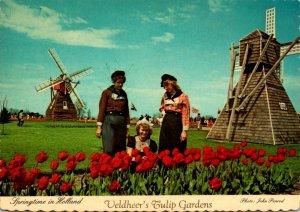 Michigan Holland Veldheer's Tulip Gardens At Tulip Time
