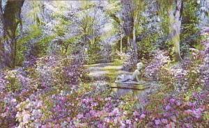 Louisiana St Francisville The Gardens Of Rosedown