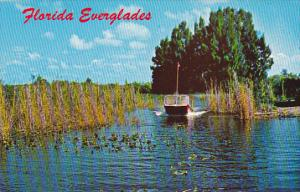 Florida Airboat Ride In The Everglades