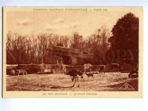 172879 FRANCE PARIS EXPOSITION 1931 Savane Africane Parc ZOO