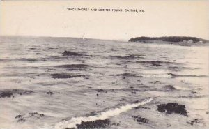 Maine Castine Back Shore And Lobster Pound Albertype