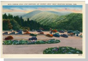 Smoky Mountains Nat'l Park,Postcard,NC/TN, Newfound,Nr Mint!