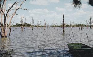 Northwest Territory , TALLAHASSEE , Florida , 50-60s