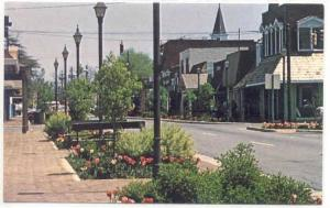 Street View in Perry,Georgia, 40-60s