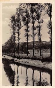 Postcard River Lake, Trees Reflection, Postcard
