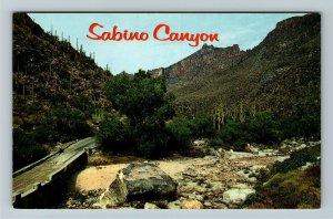 Tucson AZ- Arizona, Sabino Canyon, Recreational Area, Chrome Postcard
