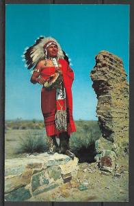 Native American Western Indian Chief - [MX-093]