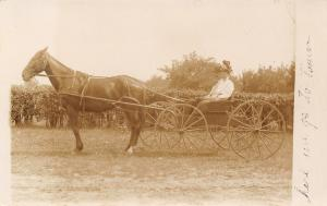 Here We Go to Town Couple in Open Carriage~Lady in Tall Hat~Horse~1909 RPPC