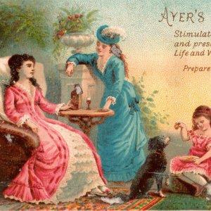 1880's Ayer's Sarsaparilla Lounging Woman Children Dog Victorian Trade Card