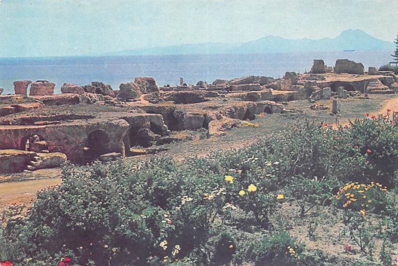Tunisia Carthage Antoninus Thermae Thermal Baths