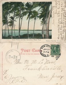 PUERTO RICO COCO PALMS SAN GERONIMO ANTIQUE UNDIVIDED 1908 POSTCARD CORK CANCEL
