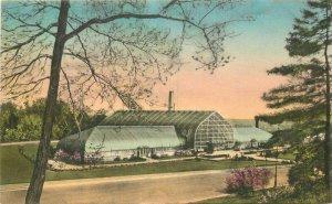 Albertype Cincinnati Ohio Eden Park Conservatory  Postcard hand colored 20-7578