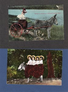 Girls / Women and Donkeys, Burros, Cart, Driven To Drink By A Women, Vtg