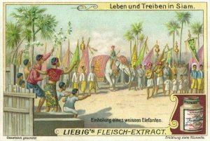 siam thailand, Welcoming of a White Elephant (1899) Liebig Trade Card