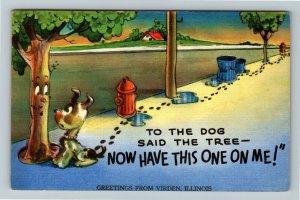 Virden IL-Illinois, Comic Greetings, Dog & Tree, Linen c1954 Postcard